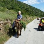 quad safari supetar, quad safari supetar gastro, quad safari bol, rent a quad supetar, rent a quad bol, najam quad bol, najma quad supetar, brac adventure, island tour, gastro tour, golden horn beach, zlatni rat beac