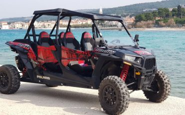 BUGGY for FAMILY -Polaris RZR 4 1000